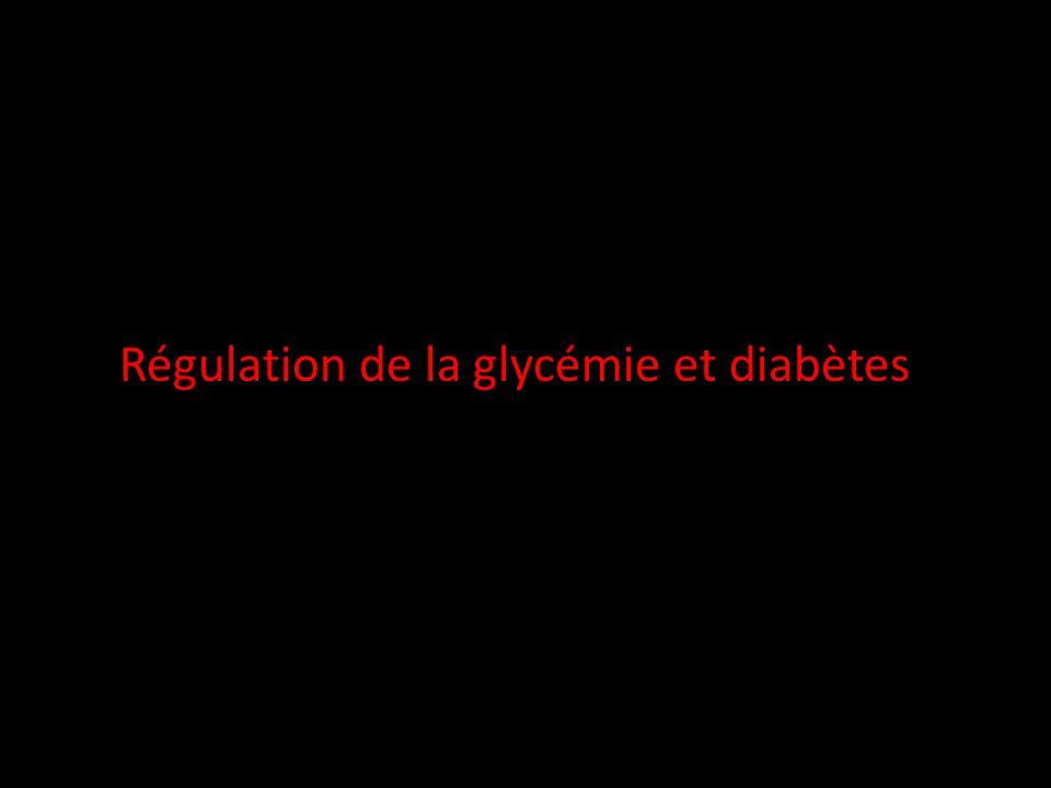 Régulation de la glycémie et diabètes