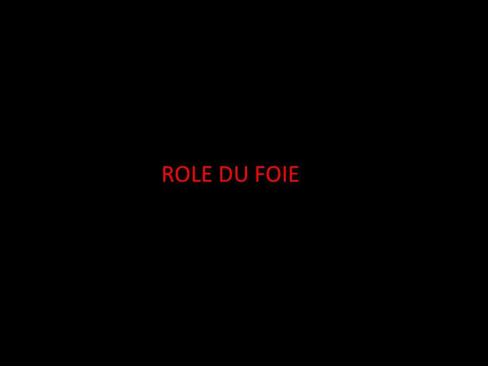 ROLE DU FOIE