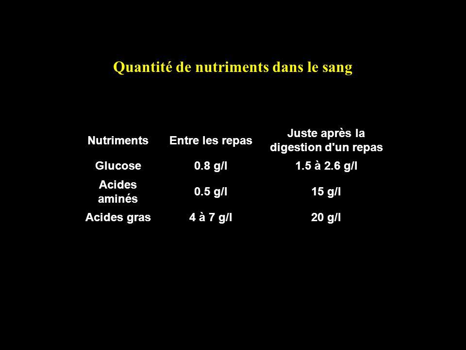 NutrimentsEntre les repas Juste après la digestion d'un repas Glucose0.8 g/l1.5 à 2.6 g/l Acides aminés 0.5 g/l15 g/l Acides gras4 à 7 g/l20 g/l Quant