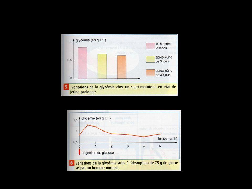 http://www.monanneeaucollege.com/3.svt.chap7-doc.htm# Les trois oses simples (glucose, galactose, fructose) arrivent au foie par la veine porte hépatique (1).