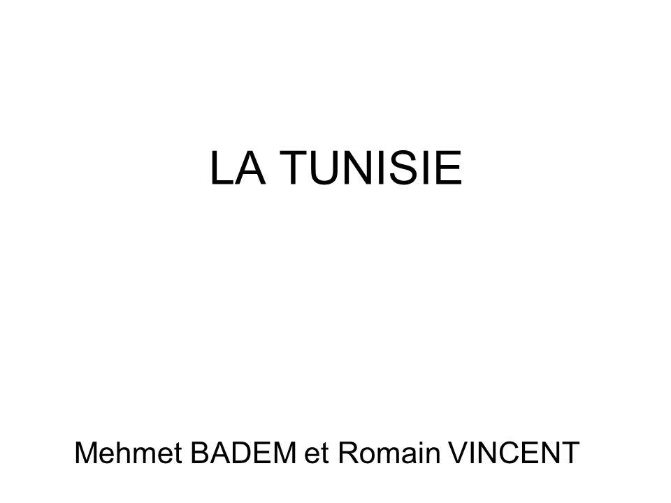 LA TUNISIE Mehmet BADEM et Romain VINCENT