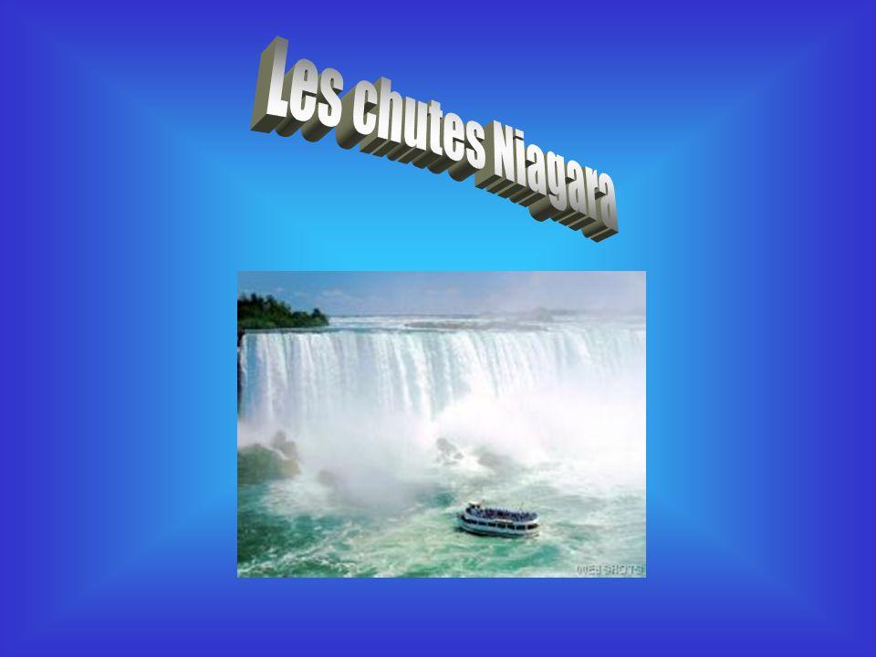 Notre équipe a choisi de vous présenter une recherche sur les chutes Niagara.
