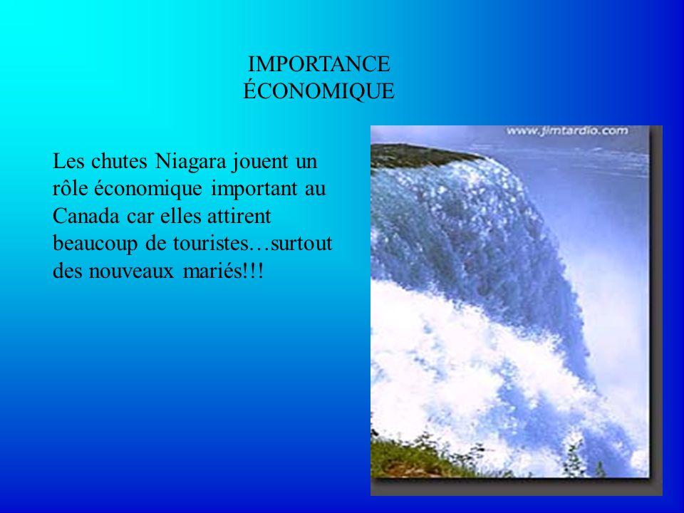 IMPORTANCE ÉCONOMIQUE Les chutes Niagara jouent un rôle économique important au Canada car elles attirent beaucoup de touristes…surtout des nouveaux m