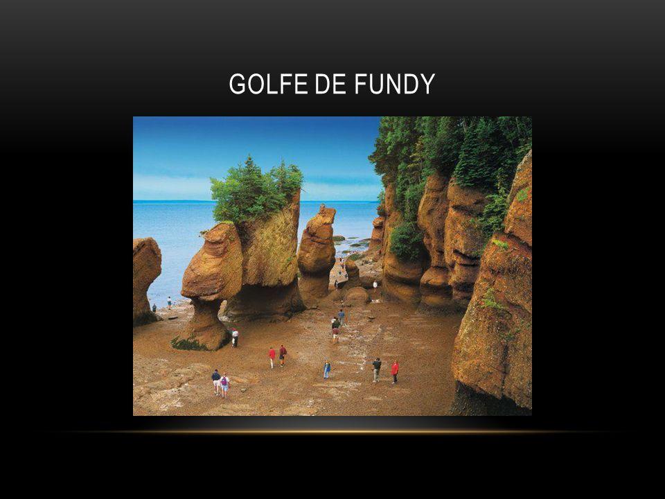 GOLFE DE FUNDY