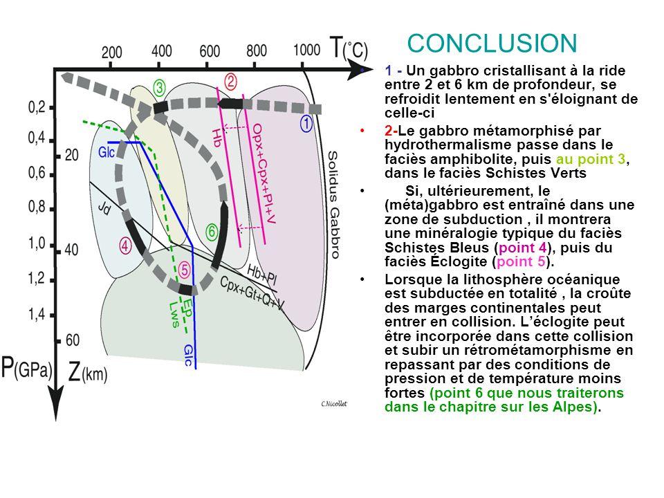 CONCLUSION 1 - Un gabbro cristallisant à la ride entre 2 et 6 km de profondeur, se refroidit lentement en s'éloignant de celle-ci 2-Le gabbro métamorp