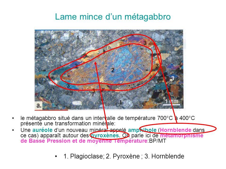 Lame mince dun métagabbro le métagabbro situé dans un intervalle de température 700°C à 400°C présente une transformation minérale: Une auréole dun no