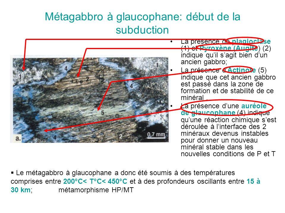 Métagabbro à glaucophane: début de la subduction La présence de plagioclase (1) et Pyroxène (Augite) (2) indique quil sagit bien dun ancien gabbro; La