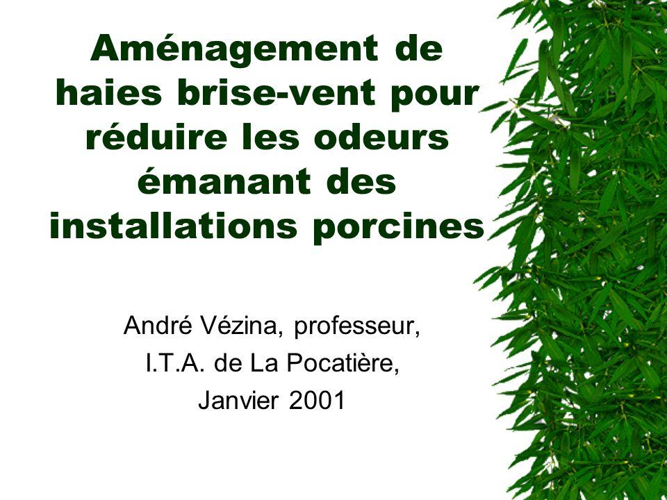 Aménagement de haies brise-vent pour réduire les odeurs émanant des installations porcines André Vézina, professeur, I.T.A.