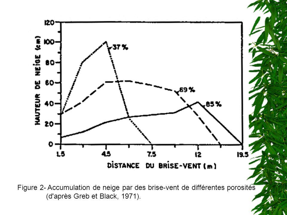 Un brise-vent, de porosité égale à 40% réduit, en moyenne, la vitesse du vent de 50% sur 10 H et de 25% entre 10 et 20 H (Vézina, 1985). Haie brise-ve