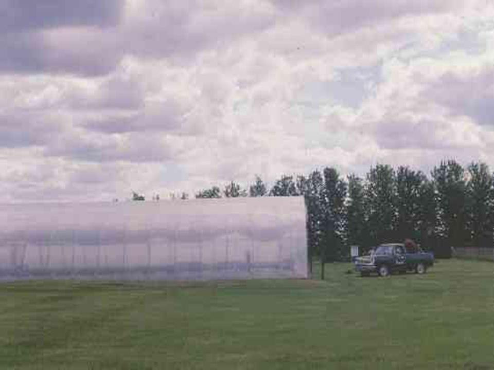 Un brise-vent, de porosité égale à 40% réduit, en moyenne, la vitesse du vent de 50% sur 10 H et de 25% entre 10 et 20 H (Vézina, 1985).