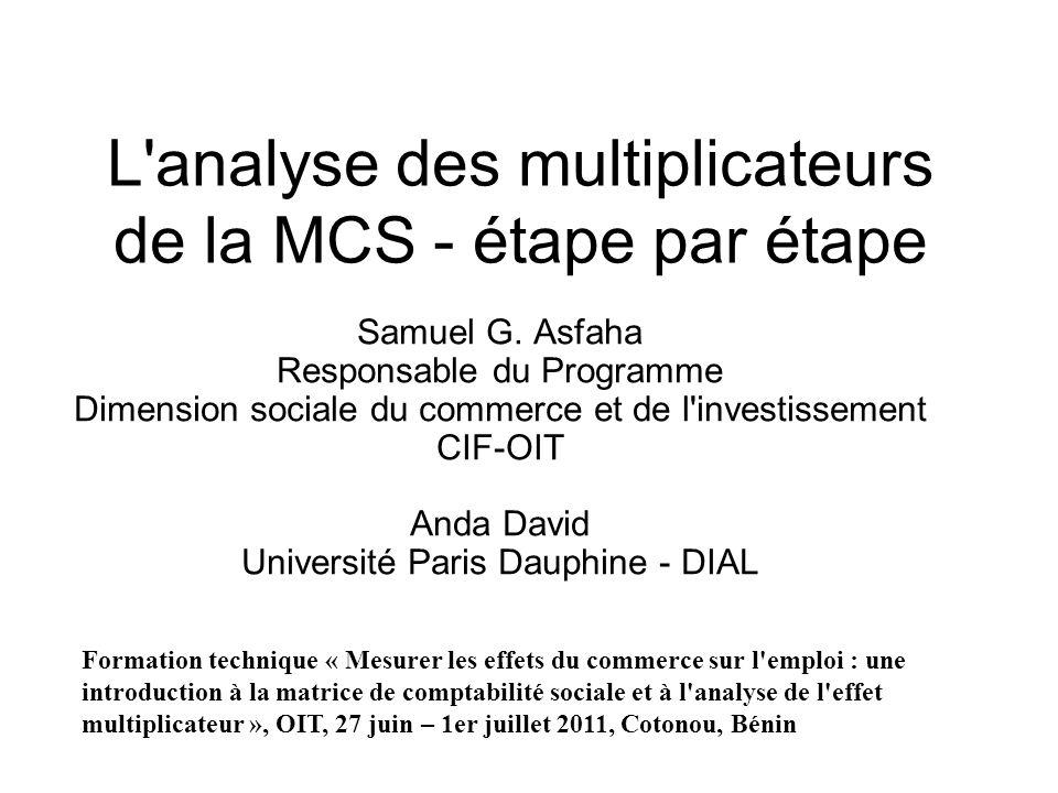 L'analyse des multiplicateurs de la MCS - étape par étape Samuel G. Asfaha Responsable du Programme Dimension sociale du commerce et de l'investisseme