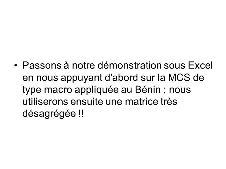 Passons à notre démonstration sous Excel en nous appuyant d'abord sur la MCS de type macro appliquée au Bénin ; nous utiliserons ensuite une matrice t