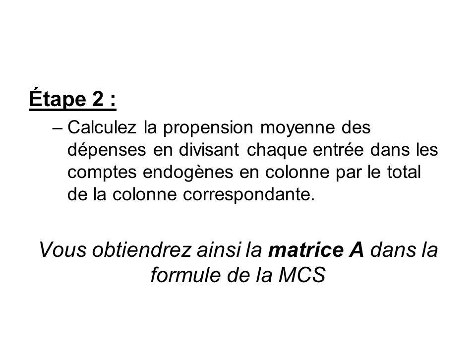 Étape 2 : –Calculez la propension moyenne des dépenses en divisant chaque entrée dans les comptes endogènes en colonne par le total de la colonne corr