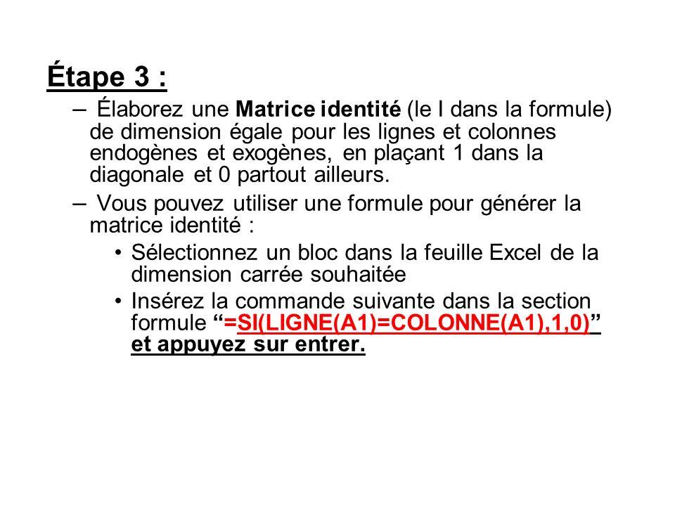 Étape 3 : – Élaborez une Matrice identité (le I dans la formule) de dimension égale pour les lignes et colonnes endogènes et exogènes, en plaçant 1 da