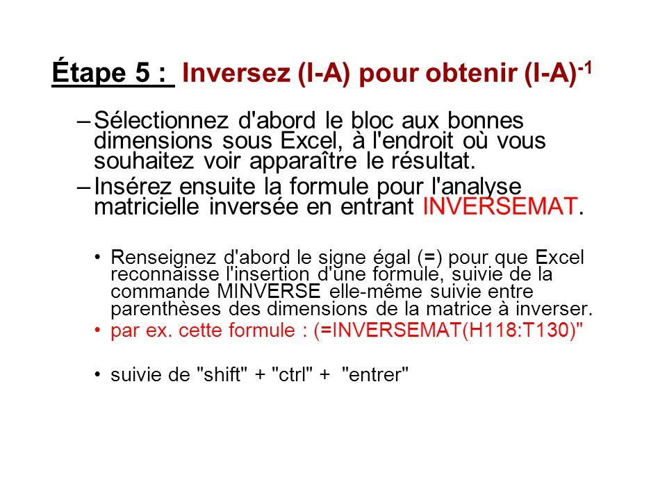 Étape 5 : Inversez (I-A) pour obtenir (I-A) -1 –Sélectionnez d'abord le bloc aux bonnes dimensions sous Excel, à l'endroit où vous souhaitez voir appa