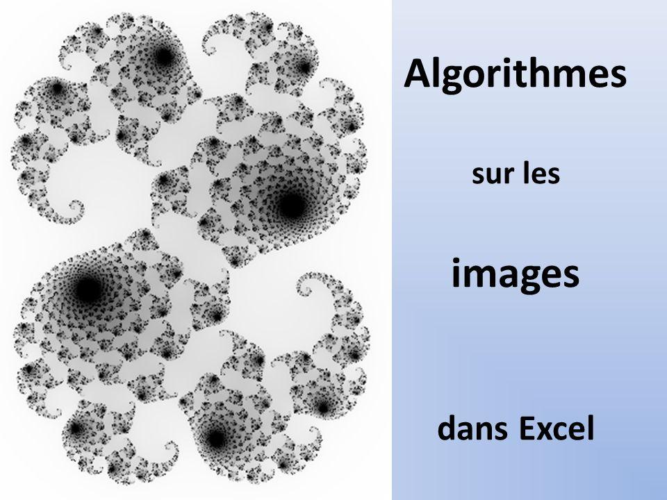 Algorithmes sur Excel Troisième étape: Création de limage en teintes de gris Une fonction Visual basic va transformer le code couleur en code gris dans le bloc de cellules L1C1:L350C200 de la feuille nommée «codenb»: Un algorithme va créer limage en teintes de gris dans la feuille « image » dans le bloc de cellules : L1C202:L350C401