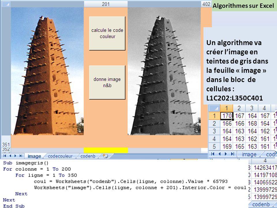 Algorithmes sur Excel Troisième étape: Création de limage en teintes de gris Une fonction Visual basic va transformer le code couleur en code gris dan