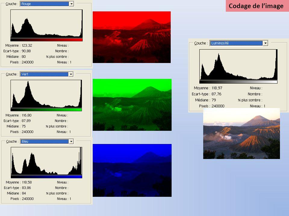 Traitement de limage Les logiciels de traitement dimages permettent de modifier limage de façons diverses et nombreuses: Transformation 1 : couleur niveaux de gris Pour chaque pixel, on fait la moyenne des 3 composantes RVB: (r,v,b) ( E[r+v+b)/3], E[(r+v+b)/3], E[(r+v+b)/3])