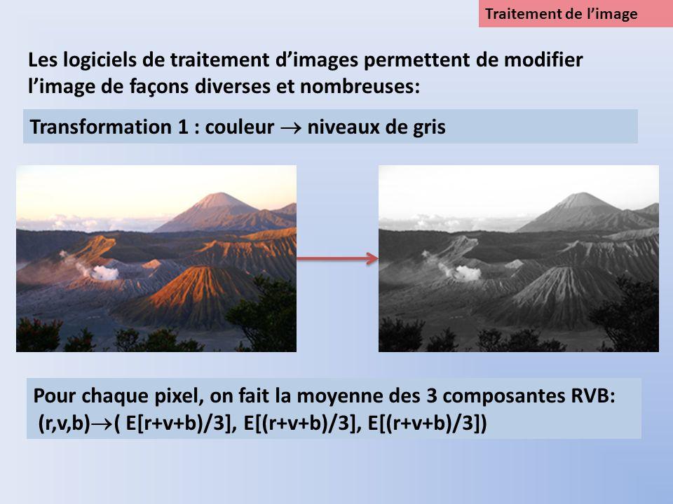 Traitement de limage Les logiciels de traitement dimages permettent de modifier limage de façons diverses et nombreuses: Transformation 1 : couleur ni