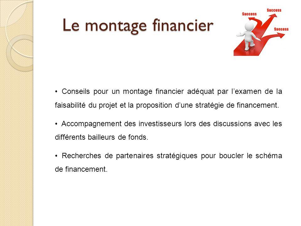 Le montage financier Conseils pour un montage financier adéquat par lexamen de la faisabilité du projet et la proposition dune stratégie de financemen