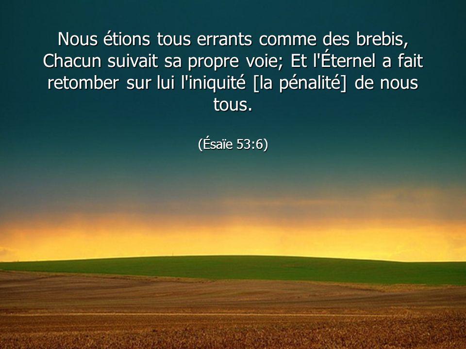 Nous étions tous errants comme des brebis, Chacun suivait sa propre voie; Et l'Éternel a fait retomber sur lui l'iniquité [la pénalité] de nous tous.