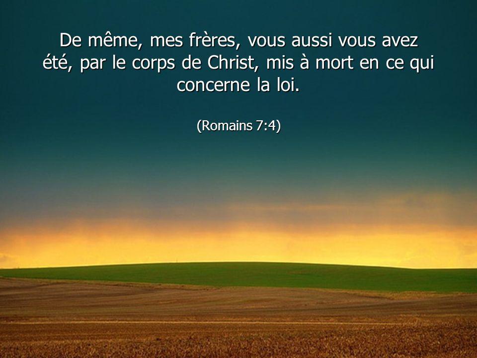 De même, mes frères, vous aussi vous avez été, par le corps de Christ, mis à mort en ce qui concerne la loi. (Romains 7:4)