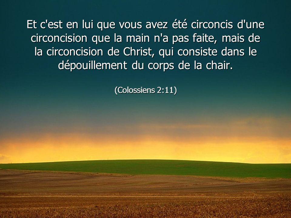 Et c'est en lui que vous avez été circoncis d'une circoncision que la main n'a pas faite, mais de la circoncision de Christ, qui consiste dans le dépo