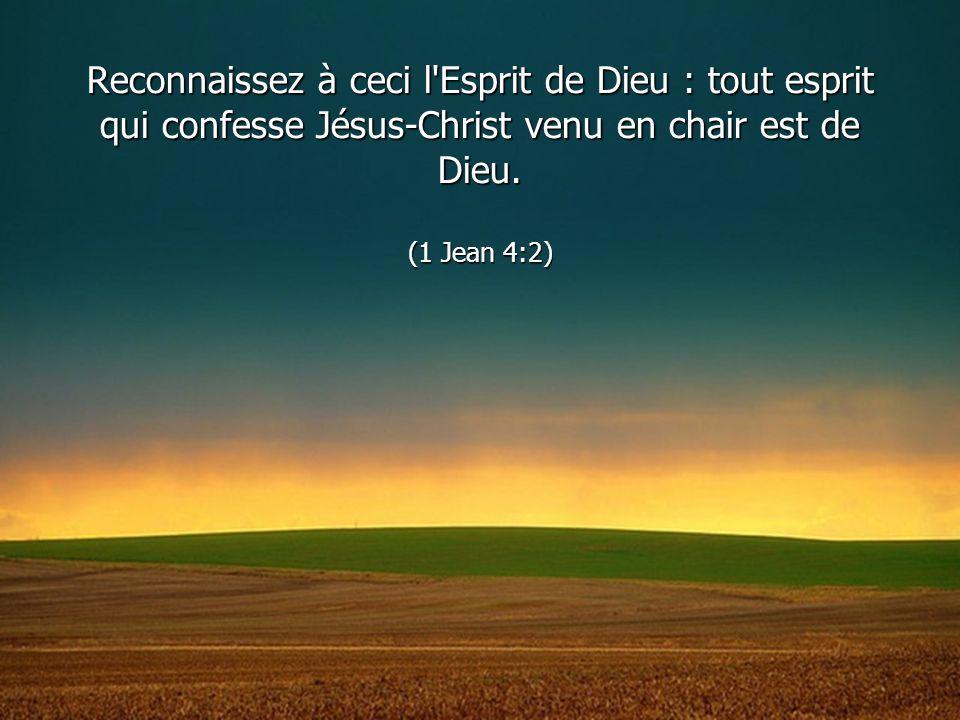 Reconnaissez à ceci l'Esprit de Dieu : tout esprit qui confesse Jésus-Christ venu en chair est de Dieu. (1 Jean 4:2)