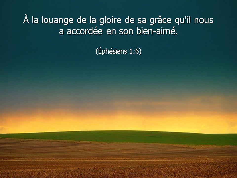 À la louange de la gloire de sa grâce qu'il nous a accordée en son bien-aimé. (Éphésiens 1:6)