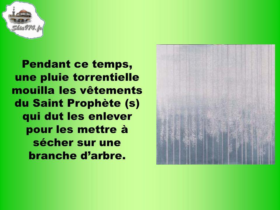 Pendant ce temps, une pluie torrentielle mouilla les vêtements du Saint Prophète (s) qui dut les enlever pour les mettre à sécher sur une branche darb