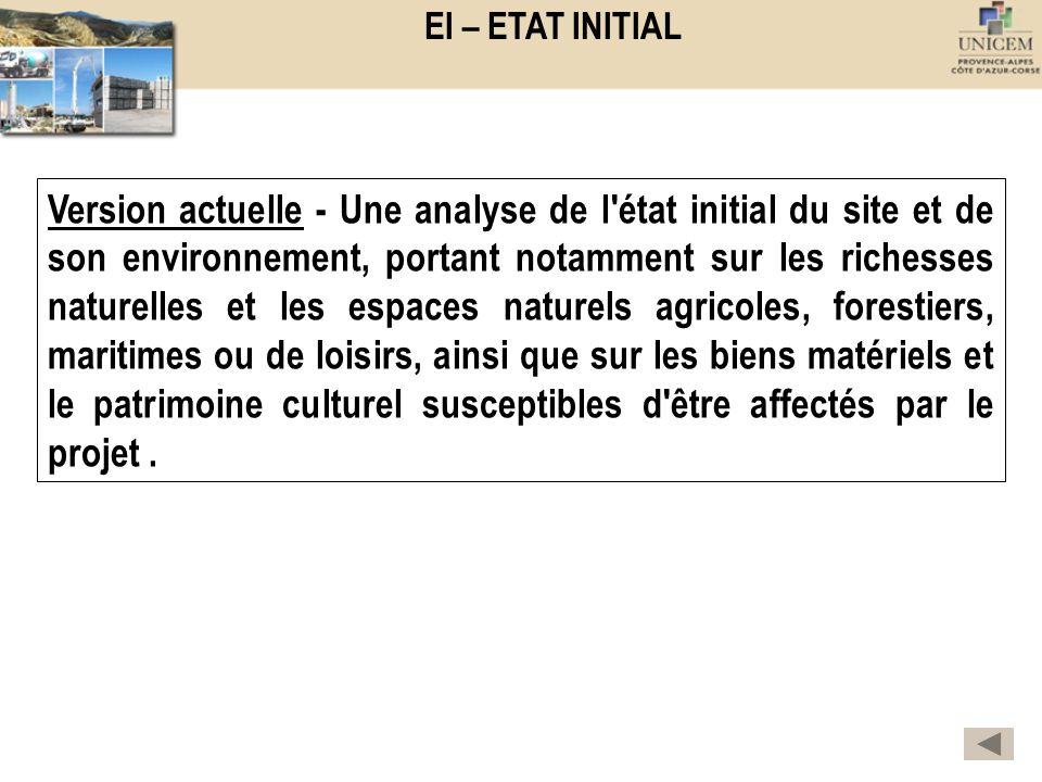 EI – ETAT INITIAL Version actuelle - Une analyse de l'état initial du site et de son environnement, portant notamment sur les richesses naturelles et