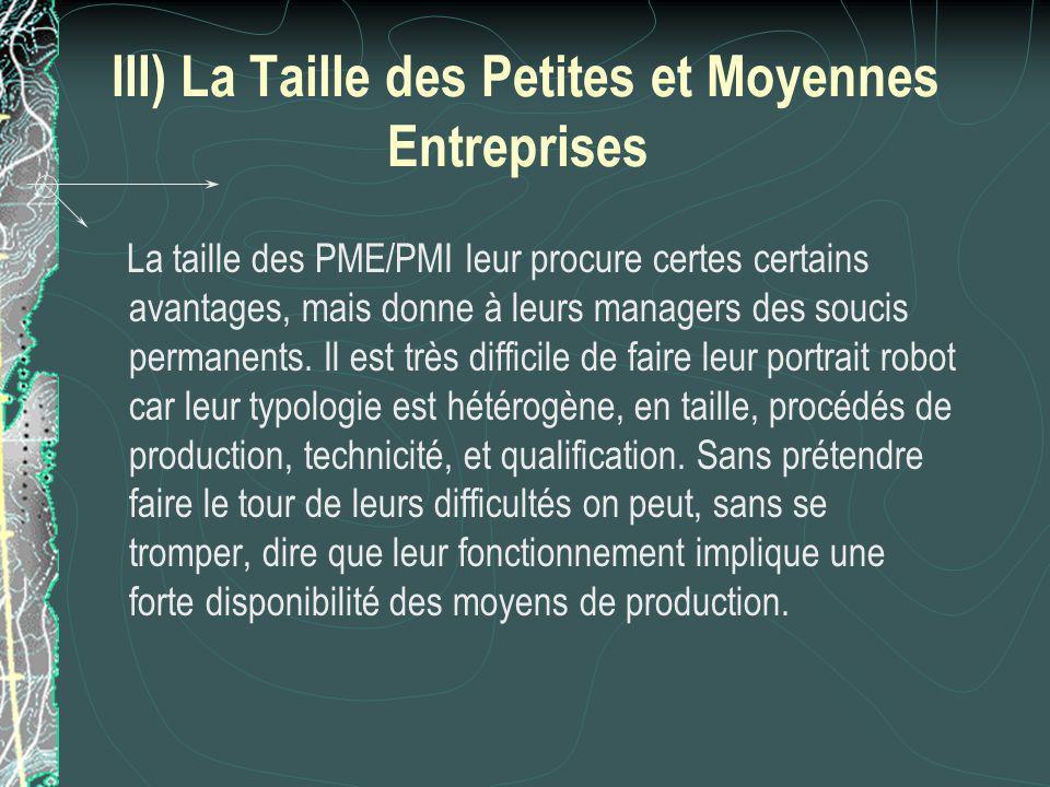 III) La Taille des Petites et Moyennes Entreprises La taille des PME/PMI leur procure certes certains avantages, mais donne à leurs managers des soucis permanents.