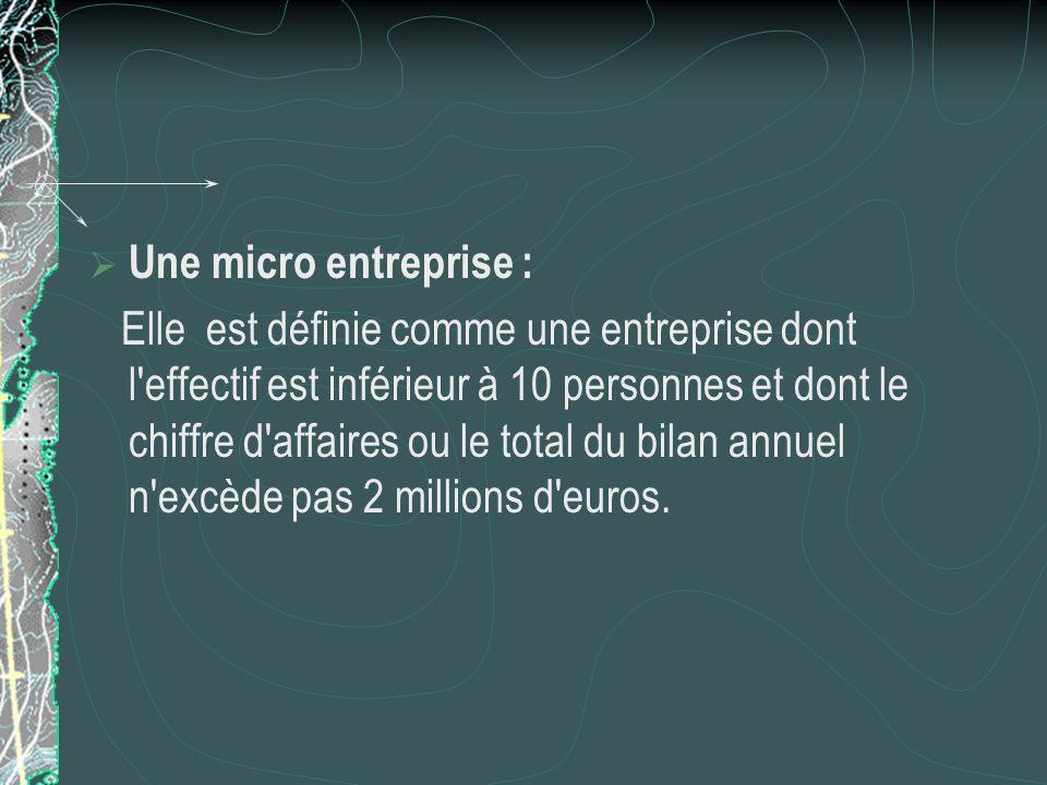 Une micro entreprise : Elle est définie comme une entreprise dont l effectif est inférieur à 10 personnes et dont le chiffre d affaires ou le total du bilan annuel n excède pas 2 millions d euros.