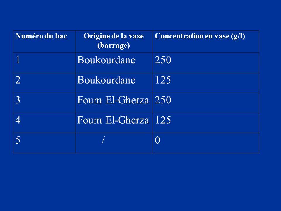 Numéro du bacOrigine de la vase (barrage) Concentration en vase (g/l) 1Boukourdane250 2Boukourdane125 3Foum El-Gherza250 4Foum El-Gherza125 5 /0