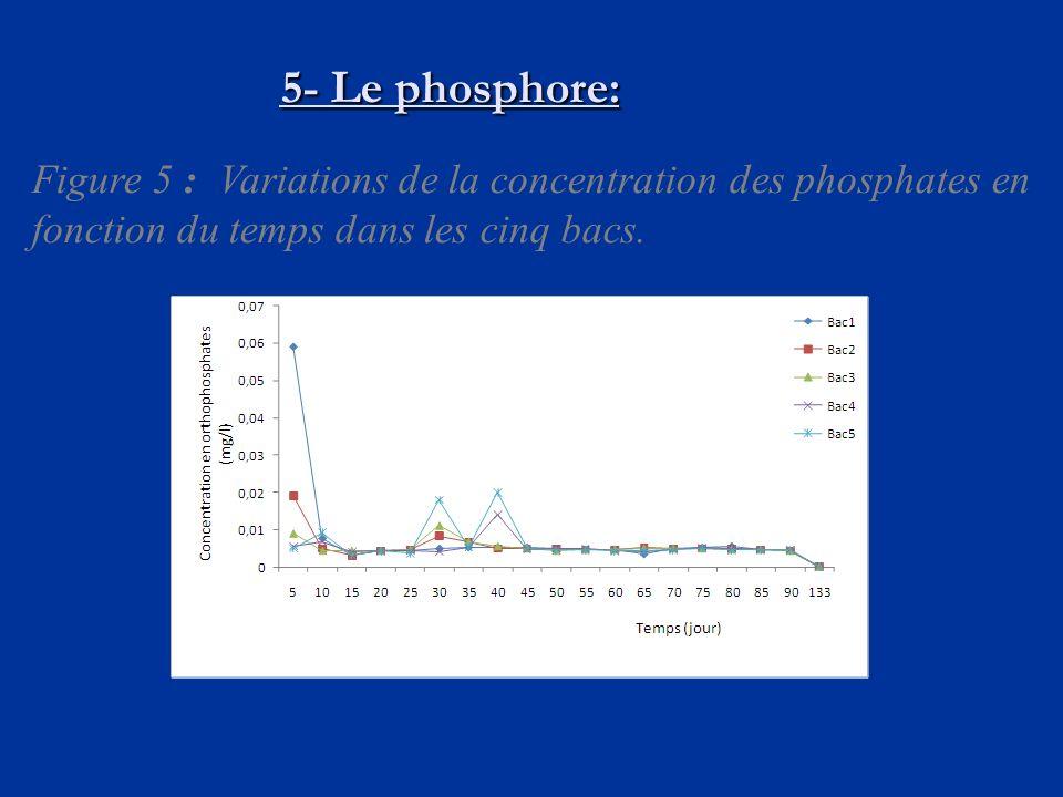 5- Le phosphore: Figure 5 : Variations de la concentration des phosphates en fonction du temps dans les cinq bacs.