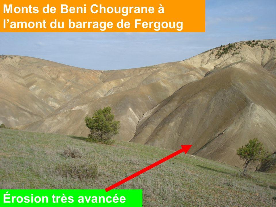 Monts de Beni Chougrane à lamont du barrage de Fergoug Érosion très avancée
