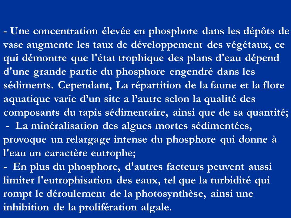 - Une concentration élevée en phosphore dans les dépôts de vase augmente les taux de développement des végétaux, ce qui démontre que l état trophique des plans d eau dépend d une grande partie du phosphore engendré dans les sédiments.