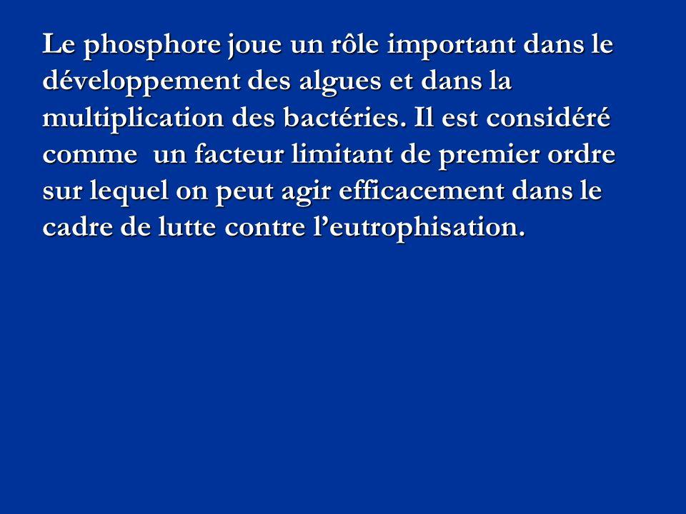 Le phosphore joue un rôle important dans le développement des algues et dans la multiplication des bactéries.