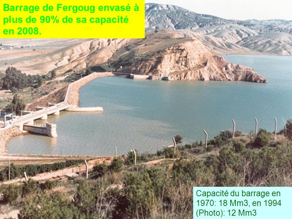 Barrage de Fergoug envasé à plus de 90% de sa capacité en 2008.