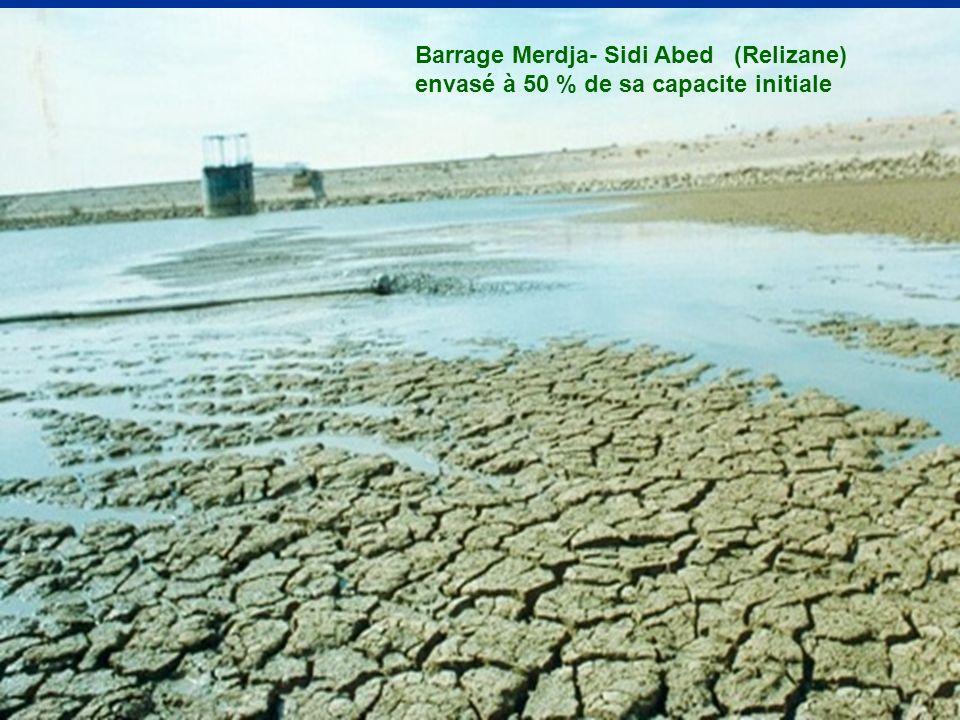 Barrage Merdja- Sidi Abed (Relizane) envasé à 50 % de sa capacite initiale