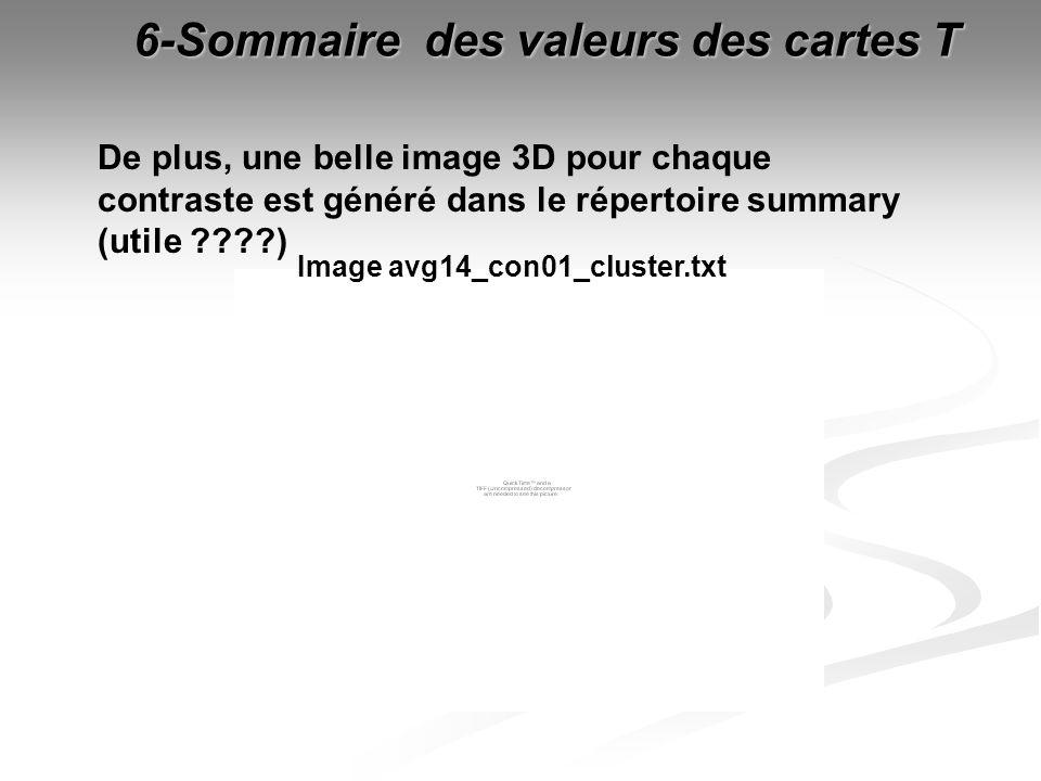 6-Sommaire des valeurs des cartes T Image avg14_con01_cluster.txt De plus, une belle image 3D pour chaque contraste est généré dans le répertoire summ