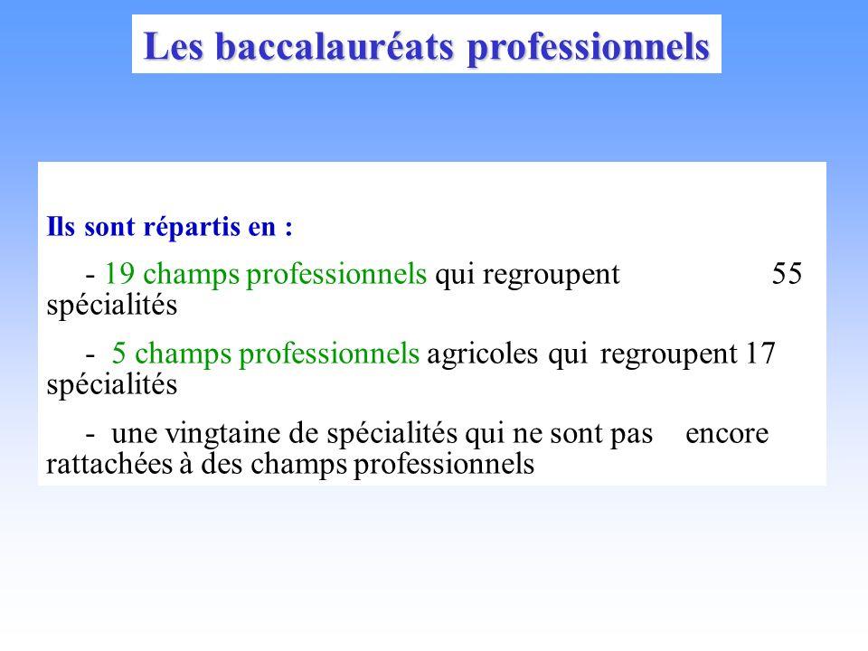 Les baccalauréats professionnels Ils sont répartis en : - 19 champs professionnels qui regroupent 55 spécialités - 5 champs professionnels agricoles qui regroupent 17 spécialités - une vingtaine de spécialités qui ne sont pas encore rattachées à des champs professionnels
