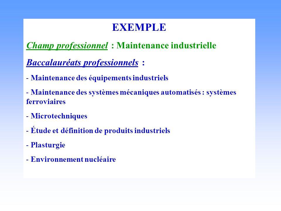 EXEMPLE Champ professionnel : Maintenance industrielle Baccalauréats professionnels : - Maintenance des équipements industriels - Maintenance des systèmes mécaniques automatisés : systèmes ferroviaires - Microtechniques - Étude et définition de produits industriels - Plasturgie - Environnement nucléaire