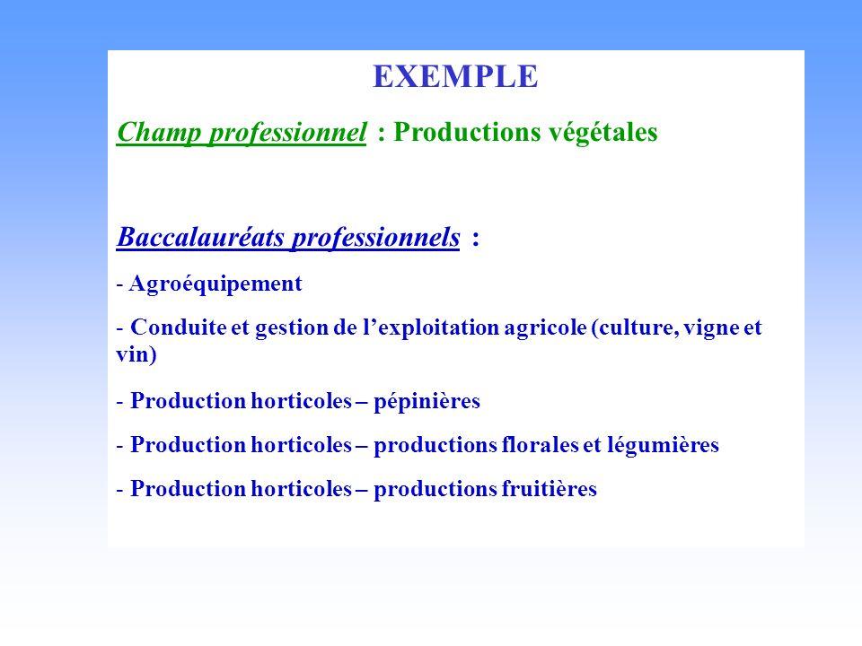EXEMPLE Champ professionnel : Productions végétales Baccalauréats professionnels : - Agroéquipement - Conduite et gestion de lexploitation agricole (c