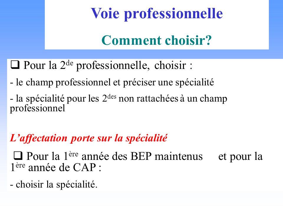 Voie professionnelle Comment choisir? Pour la 2 de professionnelle, choisir : - le champ professionnel et préciser une spécialité - la spécialité pour