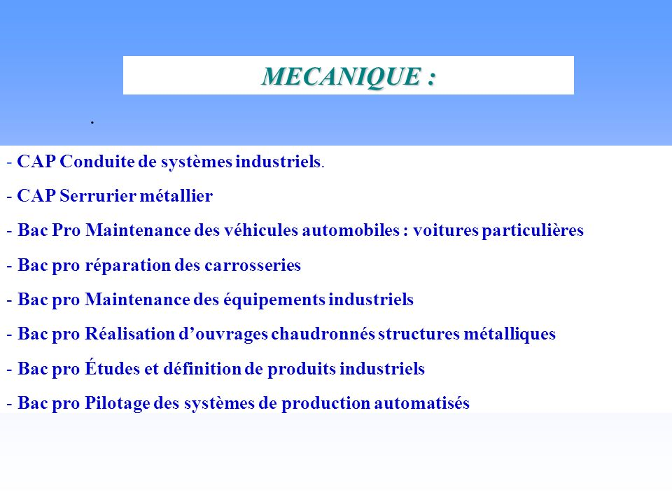 . - CAP Conduite de systèmes industriels. - CAP Serrurier métallier - Bac Pro Maintenance des véhicules automobiles : voitures particulières - Bac pro