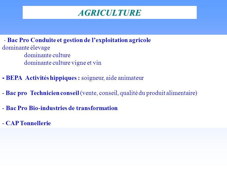 AGRICULTURE - Bac Pro Conduite et gestion de lexploitation agricole dominante élevage dominante culture dominante culture vigne et vin - BEPA Activité