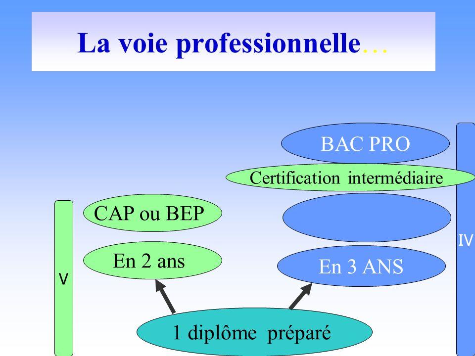 La voie professionnelle… 1 diplôme préparé En 2 ans En 3 ANS V IV BAC PRO CAP ou BEP Certification intermédiaire