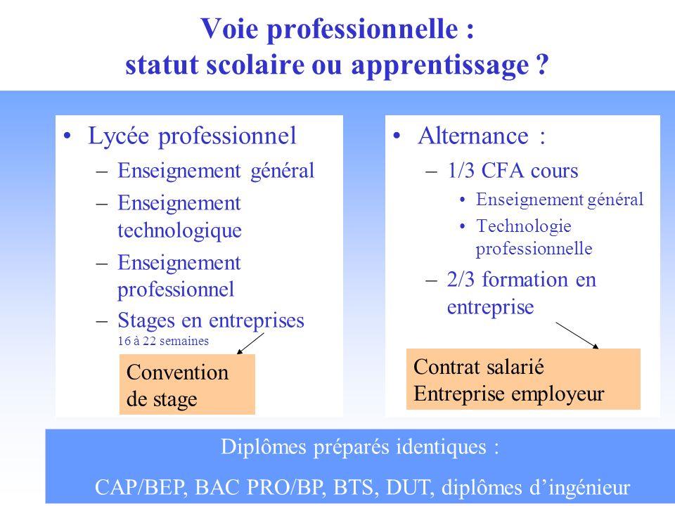 Voie professionnelle : statut scolaire ou apprentissage ? Alternance : –1/3 CFA cours Enseignement général Technologie professionnelle –2/3 formation