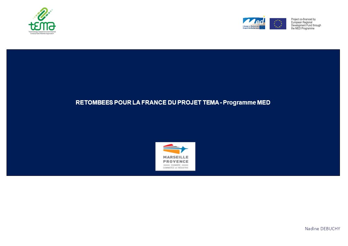 BILAN DES ACTIONS MENEES DANS LE CADRE DU PROJET TEMA 2 La responsabilité opérationnelle pour la France du projet européen TEMA (Technology-based Environmental Enterprises Market Approach) s est traduite par des actions concrètes en faveur des entreprises GREEN TECH régionales.